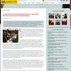 Sommet des 3 bassins forestiers tropicaux : Les experts planchent sur les documents fondamentaux