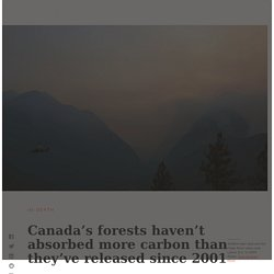 Canada's forests haven't absorbed more carbon than they've released since 2001