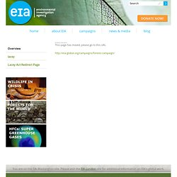 Environmental Investigation Agency (EIA), Washington, DC - Forests for the World