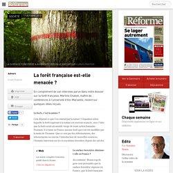 La forêt française est-elle menacée ?