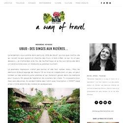 Ubud : forêt des singes et rizières