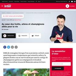 FRANCE INTER 07/03/20 DU VENT DANS LES SYNAPSES - Au cœur des forêts, arbres et champignons alliés pour la vie