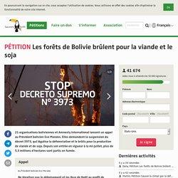 Les forêts de Bolivie brûlent pour la viande et le soja
