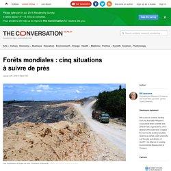 Forêts mondiales : cinq situations àsuivre deprès
