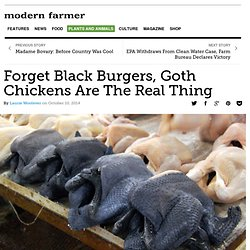 Forget Black Burgers, Goth Chickens Are The Real Thing