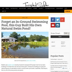 Forget an In-Ground Swimming Pool, this Guy Built His Own Natural Swim Pond!