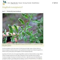 Förgiftade tomatplantor? — Odla din egen mat