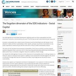 The forgotten dimension of the SDG indicators – Social Capital