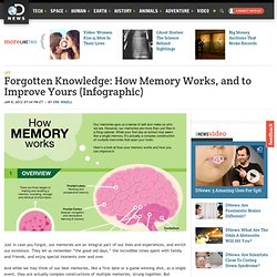 Forgotten Knowledge: How Memory Works, and to Improve Yours (Infographic)