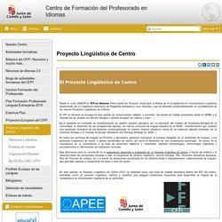 PLC Centro de Formación del Profesorado en Idiomas - Castilla y León