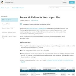 Format Guidelines for Your Import File