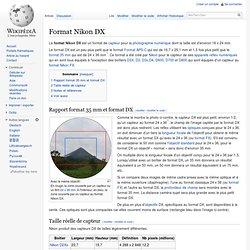 Format Nikon DX