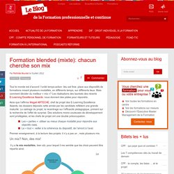Formation blended (mixte): chacun cherche son mix
