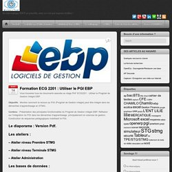 Utiliser le Progiciel de Gestion Intégré EBP.