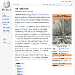 Fur Formation