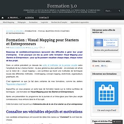 Formation : Visual Mapping pour Starters et Entrepreneurs