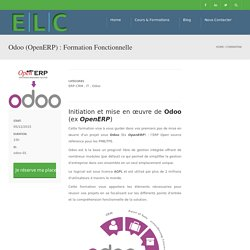 Odoo (OpenERP) : Formation Fonctionnelle