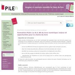 Formation PILEn: Le B.A.-BA du livre numérique: enjeux et opportunités pour la chaîne du livre