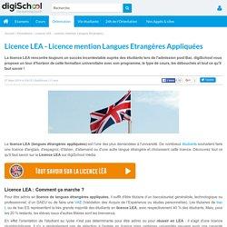 Licence LEA : formation, programme et débouchés