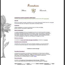 Formation en Cuisine des Plantes Sauvages Comestibles