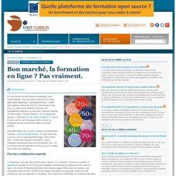 2013 Bon marché, la formation en ligne ? Pas vraiment.