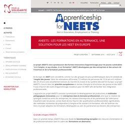 ANEETs : Les formations en alternance, une solution pour les NEET en Europe