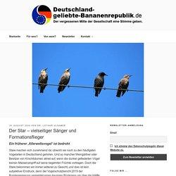 Der Star – vielseitiger Sänger und Formationsflieger - Deutschland-geliebte-Bananenrepublik.de
