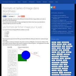 Formats et tailles d'image dans Wordpress