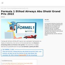 Se Formel 1 live gratis på nätet med VPN. Läs mer här.