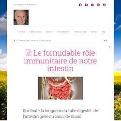 Le formidable rôle immunitaire de notre intestin