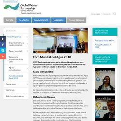 Foro Mundial del Agua 2018 - GWP