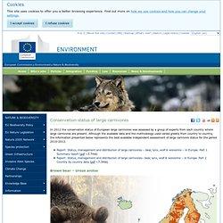Commision européenne - Etat des populations de grands carnivores en Europe