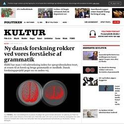 Ny dansk forskning rokker ved vores forståelse af grammatik