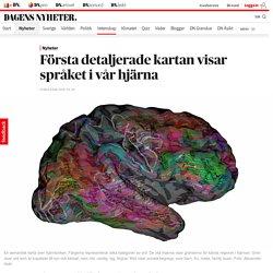Första detaljerade kartan visar språket i vår hjärna