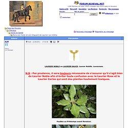 FORUM ACHEVAL.NET - Faire son Huile et son Onguent de Laurier soi-même
