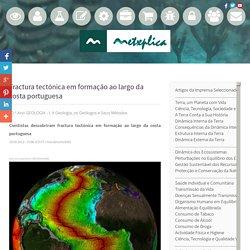 Ciências Naturais, Biologia e Geologia