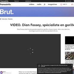 Dian Fossey, spécialiste en gorilles