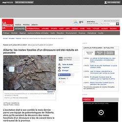 Alberta: les restes fossiles d'un dinosaure ont été réduits en poussière