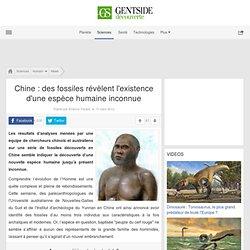 Chine: des fossiles révèlent l'existence d'une espèce humaine inconnue