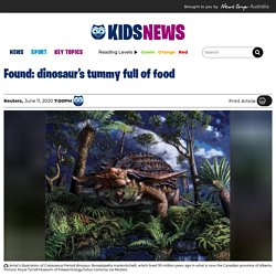 Fossilised last meal of plant-eating dinosaur found in Alberta, Canada