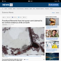 Fossilised filaments from hot ocean vent claimed to be earliest evidence of life on Earth - Science News
