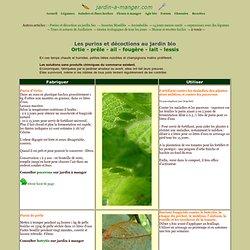 Les purins d'ortie, de prêle, d'ail ou de fougère et autres décoctions au potager et au jardin bio