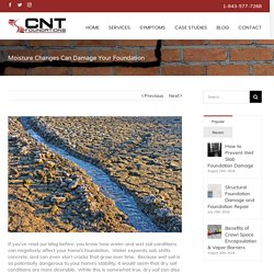 Moisture Changes Can Damage Your Foundation - CNT Foundations