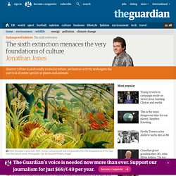 The sixth extinction menaces the very foundations of culture