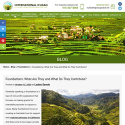 Foundations: What Are They and What Do They Contribute?