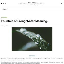 Fountain of Living Water Meaning. - AQUA WORLD