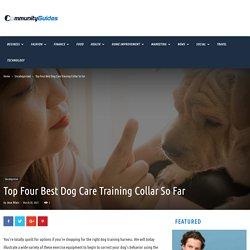 Top Four Best Dog Care Training Collar So Far