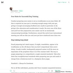 Four Rules for Successful Dog Training