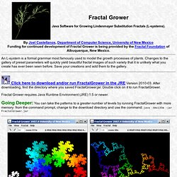 Fractal Grower (home)