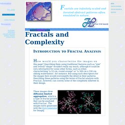 Fractals and Complexity
